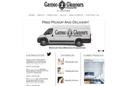 Cameo Cleaners Web Design