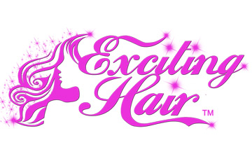 Exciting Hair Logo Design